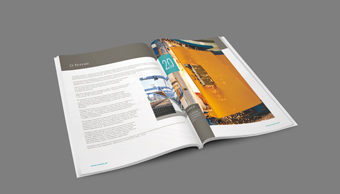 moris - katalog produktów