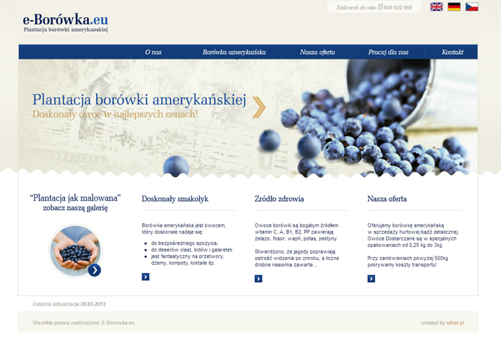 e-borowka-serwis1.jpg