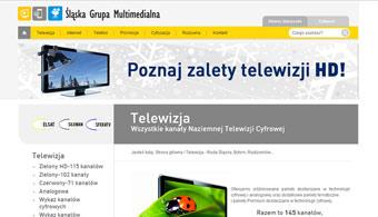Serwis internetowy