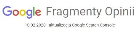 Fragmenty Opinii w Google Search Console